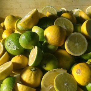 Bergamotto calabrese naturale, frutto fresco 5kg